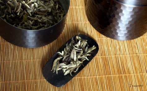 Wild white tea from Fuding, Fujian