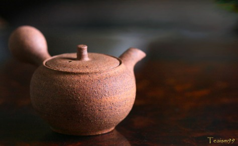 Shigaraki Kyusu by Masaki Tachi